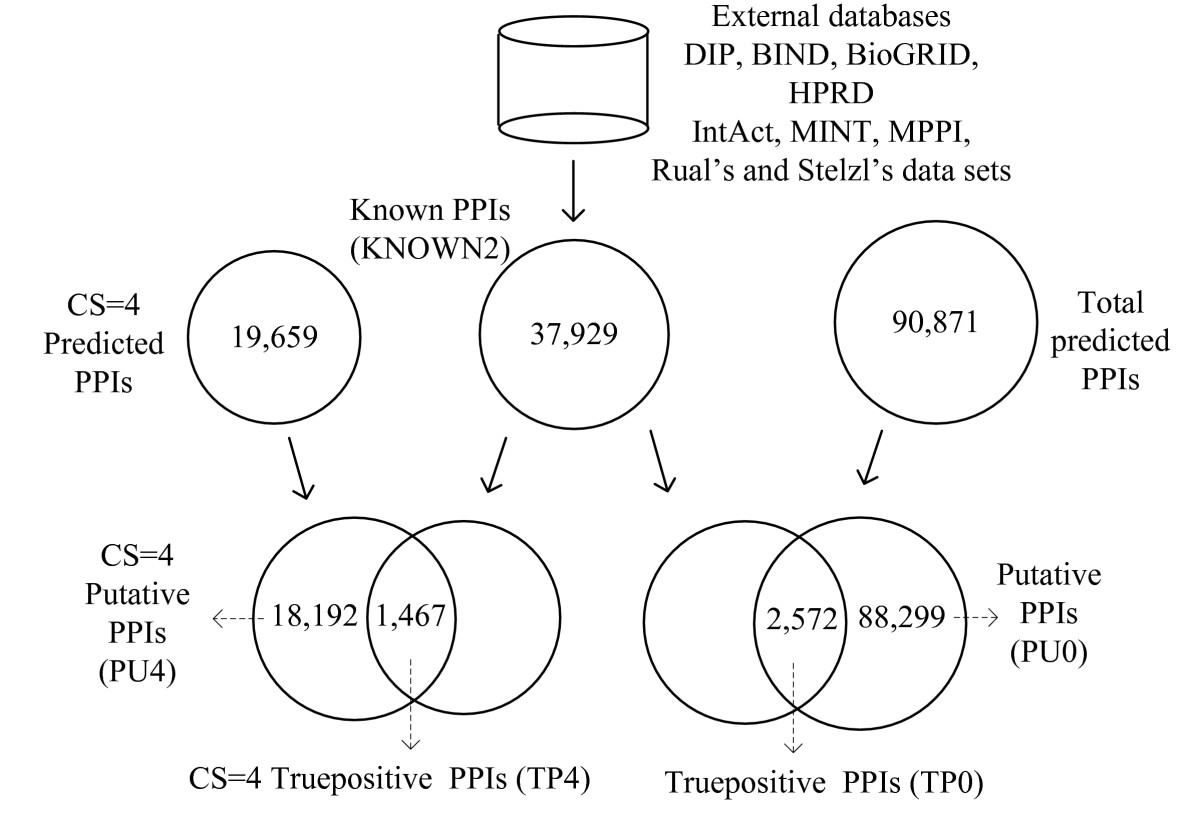 https://static-content.springer.com/image/art%3A10.1186%2F1471-2105-8-152/MediaObjects/12859_2006_Article_1524_Fig1_HTML.jpg