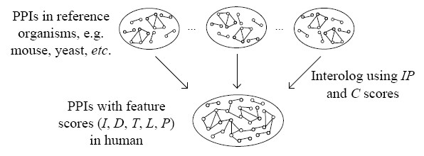 https://static-content.springer.com/image/art%3A10.1186%2F1471-2105-8-152/MediaObjects/12859_2006_Article_1524_Fig5_HTML.jpg