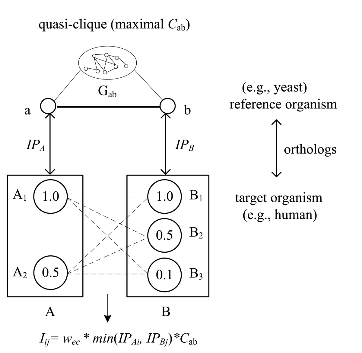 https://static-content.springer.com/image/art%3A10.1186%2F1471-2105-8-152/MediaObjects/12859_2006_Article_1524_Fig7_HTML.jpg