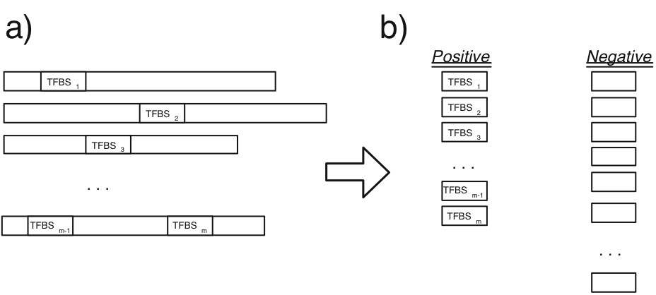 https://static-content.springer.com/image/art%3A10.1186%2F1471-2105-8-193/MediaObjects/12859_2006_Article_1565_Fig12_HTML.jpg