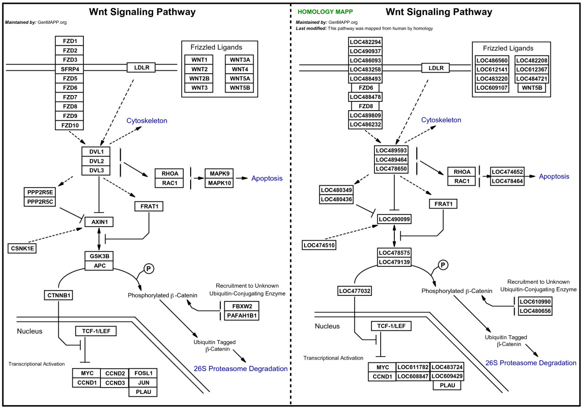 https://static-content.springer.com/image/art%3A10.1186%2F1471-2105-8-217/MediaObjects/12859_2006_Article_1589_Fig1_HTML.jpg