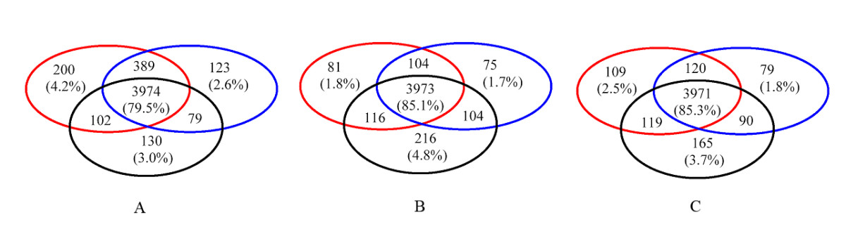 https://static-content.springer.com/image/art%3A10.1186%2F1471-2105-8-314/MediaObjects/12859_2007_Article_1686_Fig6_HTML.jpg