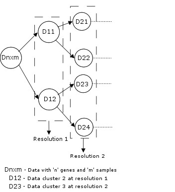 https://static-content.springer.com/image/art%3A10.1186%2F1471-2105-8-347/MediaObjects/12859_2007_Article_1719_Fig2_HTML.jpg