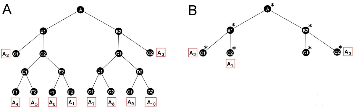 https://static-content.springer.com/image/art%3A10.1186%2F1471-2105-8-413/MediaObjects/12859_2007_Article_1785_Fig7_HTML.jpg
