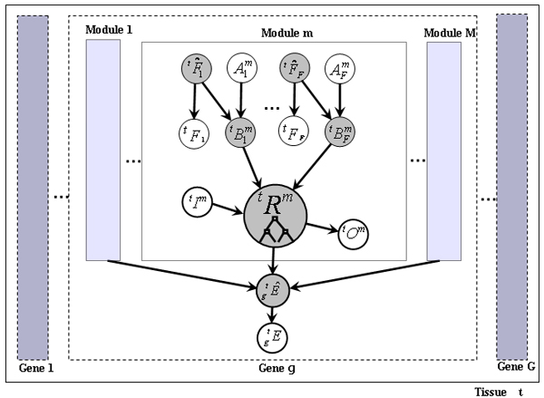 https://static-content.springer.com/image/art%3A10.1186%2F1471-2105-8-S10-S2/MediaObjects/12859_2007_Article_1979_Fig1_HTML.jpg
