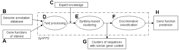 https://static-content.springer.com/image/art%3A10.1186%2F1471-2105-8-S4-S6/MediaObjects/12859_2007_Article_1909_Fig1_HTML.jpg