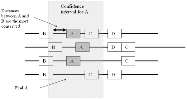 https://static-content.springer.com/image/art%3A10.1186%2F1471-2105-8-S4-S6/MediaObjects/12859_2007_Article_1909_Fig2_HTML.jpg