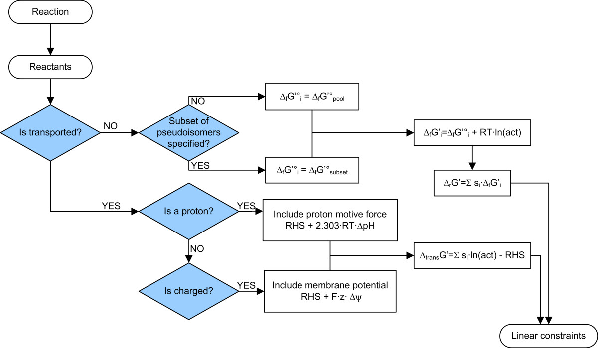 https://static-content.springer.com/image/art%3A10.1186%2F1471-2105-9-199/MediaObjects/12859_2007_Article_2184_Fig3_HTML.jpg