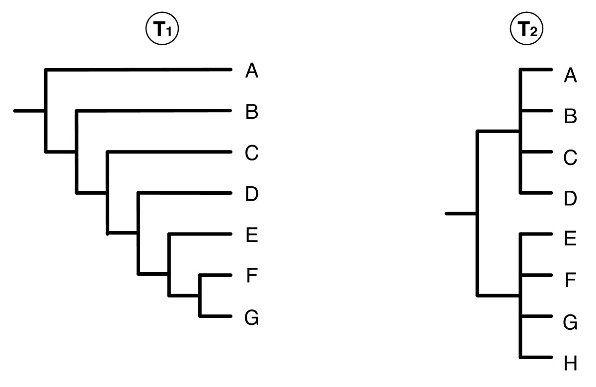 https://static-content.springer.com/image/art%3A10.1186%2F1471-2105-9-413/MediaObjects/12859_2008_Article_2398_Fig10_HTML.jpg