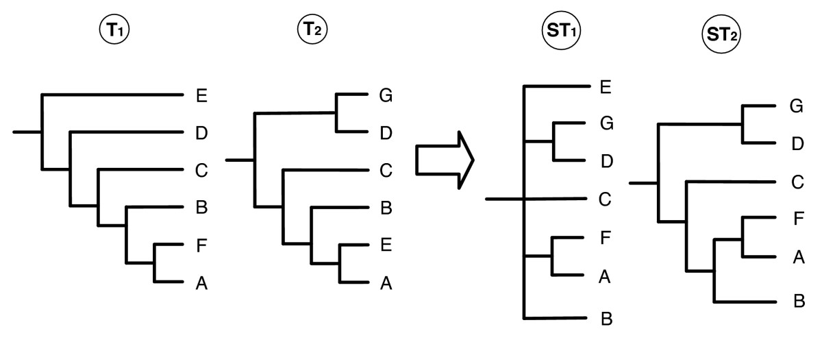 https://static-content.springer.com/image/art%3A10.1186%2F1471-2105-9-413/MediaObjects/12859_2008_Article_2398_Fig1_HTML.jpg