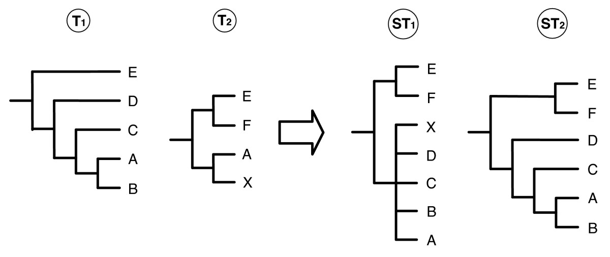 https://static-content.springer.com/image/art%3A10.1186%2F1471-2105-9-413/MediaObjects/12859_2008_Article_2398_Fig2_HTML.jpg