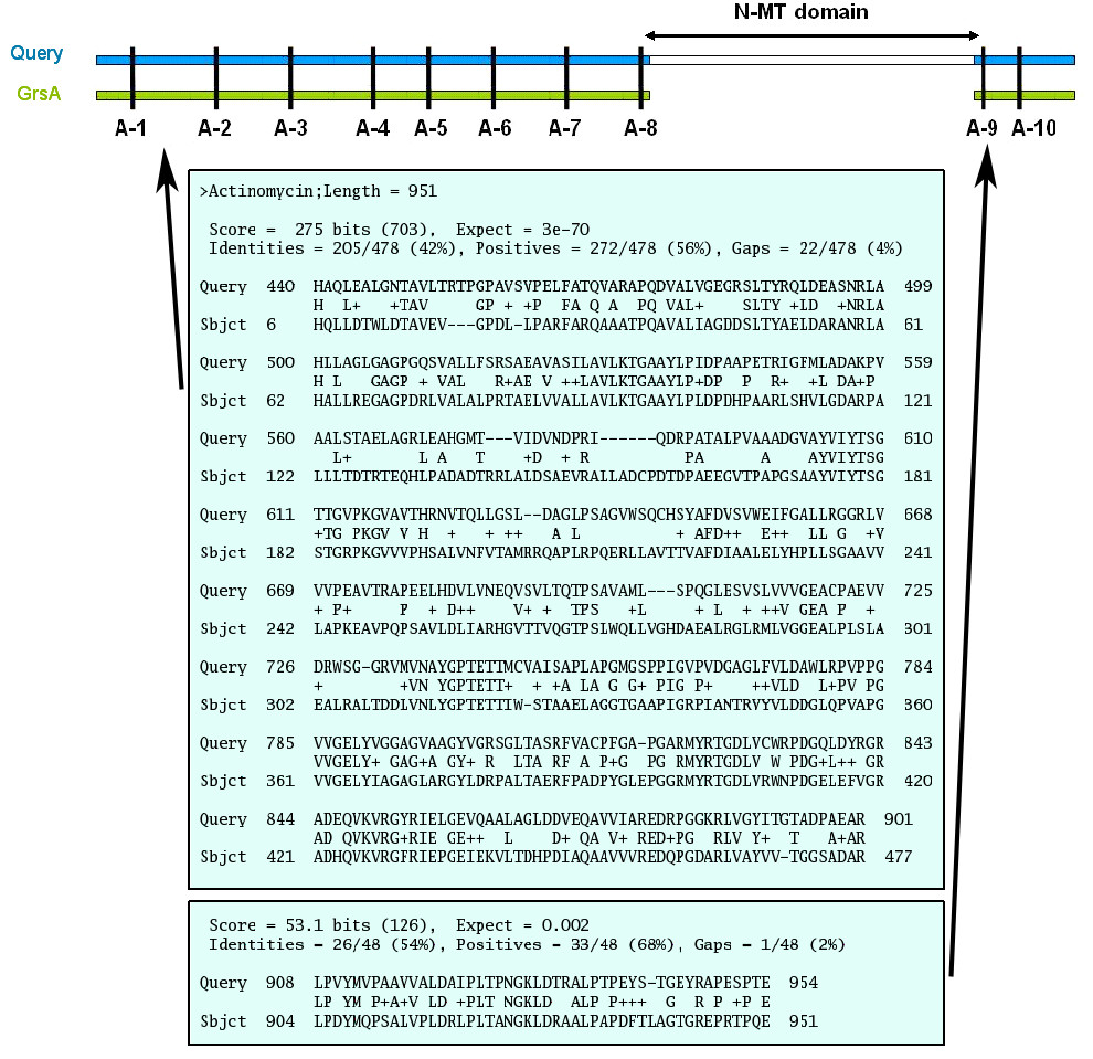 https://static-content.springer.com/image/art%3A10.1186%2F1471-2105-9-454/MediaObjects/12859_2008_Article_2439_Fig3_HTML.jpg