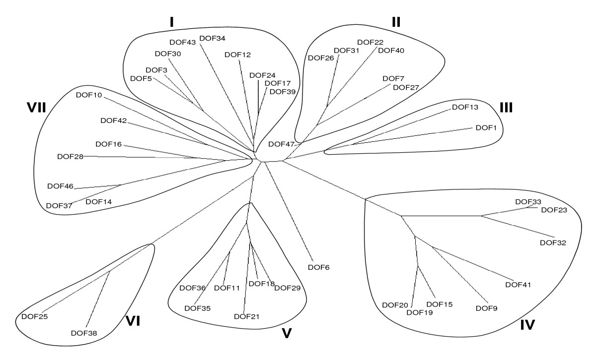 https://static-content.springer.com/image/art%3A10.1186%2F1471-2105-9-53/MediaObjects/12859_2007_Article_2038_Fig4_HTML.jpg