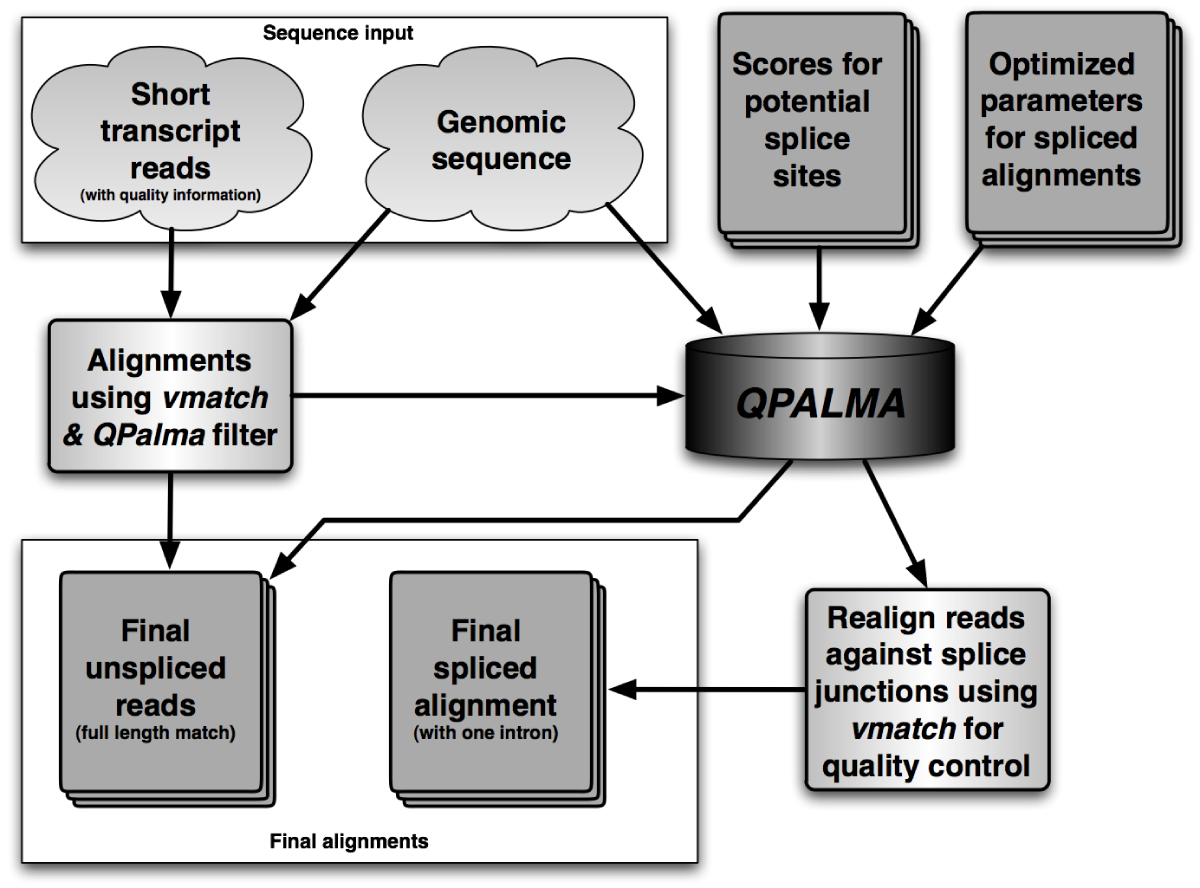 https://static-content.springer.com/image/art%3A10.1186%2F1471-2105-9-S10-O7/MediaObjects/12859_2008_Article_2687_Fig1_HTML.jpg