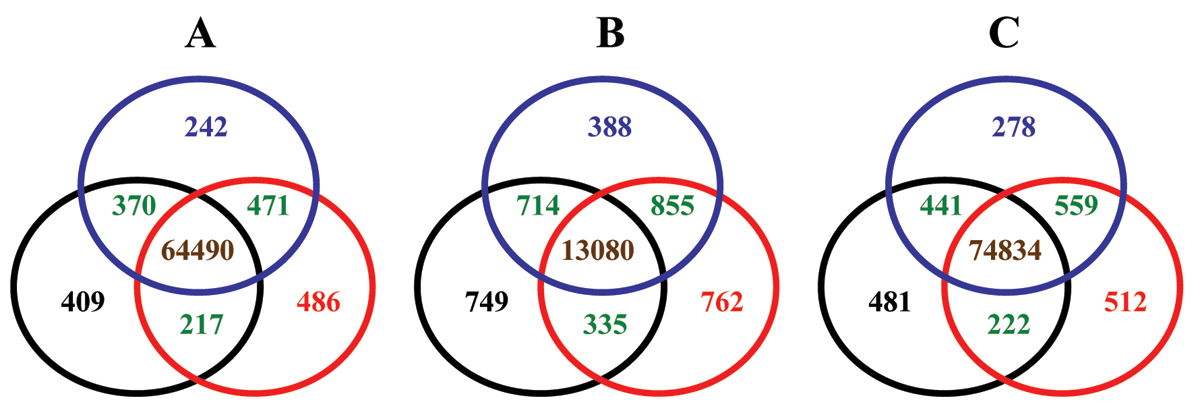 https://static-content.springer.com/image/art%3A10.1186%2F1471-2105-9-S9-S17/MediaObjects/12859_2008_Article_2676_Fig6_HTML.jpg
