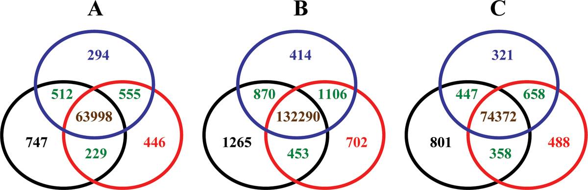 https://static-content.springer.com/image/art%3A10.1186%2F1471-2105-9-S9-S17/MediaObjects/12859_2008_Article_2676_Fig7_HTML.jpg