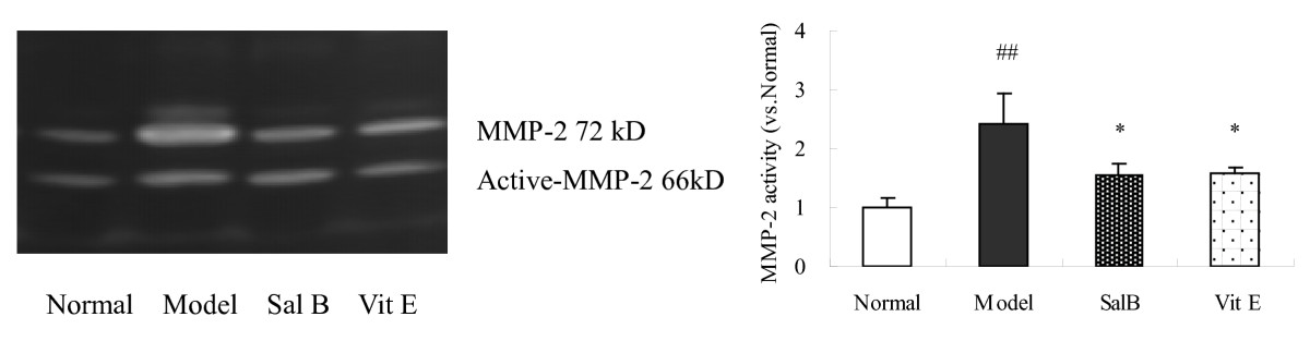 https://static-content.springer.com/image/art%3A10.1186%2F1471-2121-11-31/MediaObjects/12860_2009_Article_476_Fig5_HTML.jpg