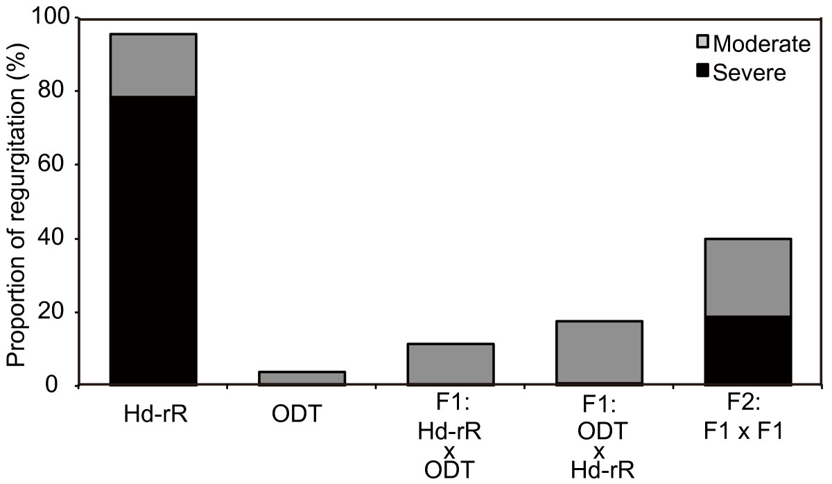 https://static-content.springer.com/image/art%3A10.1186%2F1471-213X-14-12/MediaObjects/12861_2013_Article_763_Fig7_HTML.jpg