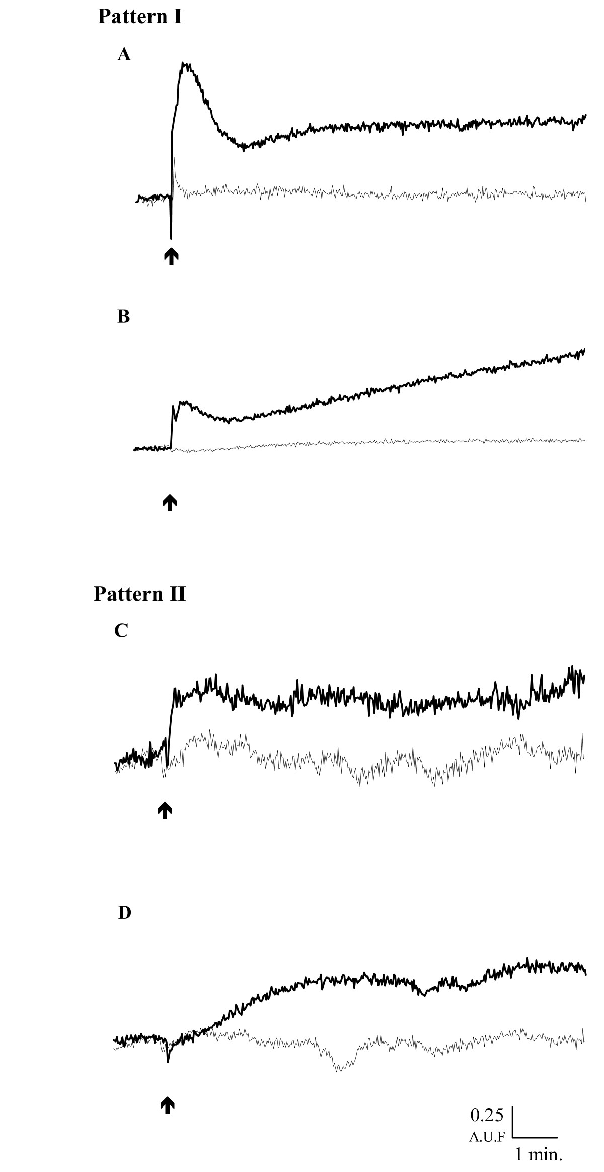 https://static-content.springer.com/image/art%3A10.1186%2F1471-213X-6-59/MediaObjects/12861_2006_Article_138_Fig3_HTML.jpg