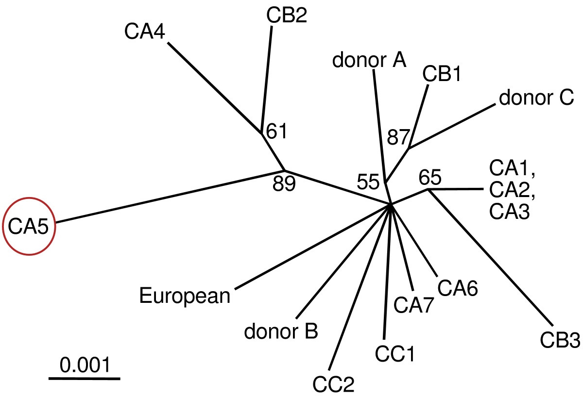 https://static-content.springer.com/image/art%3A10.1186%2F1471-213X-7-141/MediaObjects/12861_2007_Article_283_Fig1_HTML.jpg