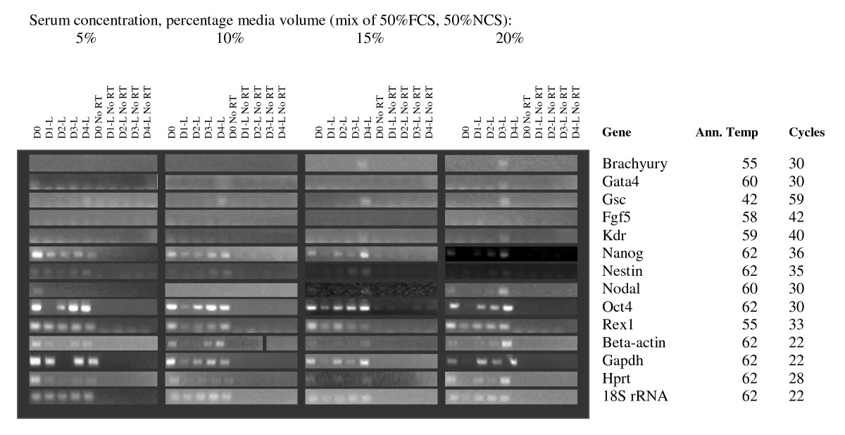 https://static-content.springer.com/image/art%3A10.1186%2F1471-213X-9-5/MediaObjects/12861_2008_Article_409_Fig7_HTML.jpg