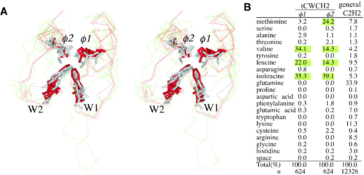 https://static-content.springer.com/image/art%3A10.1186%2F1471-2148-10-53/MediaObjects/12862_2009_Article_1269_Fig6_HTML.jpg