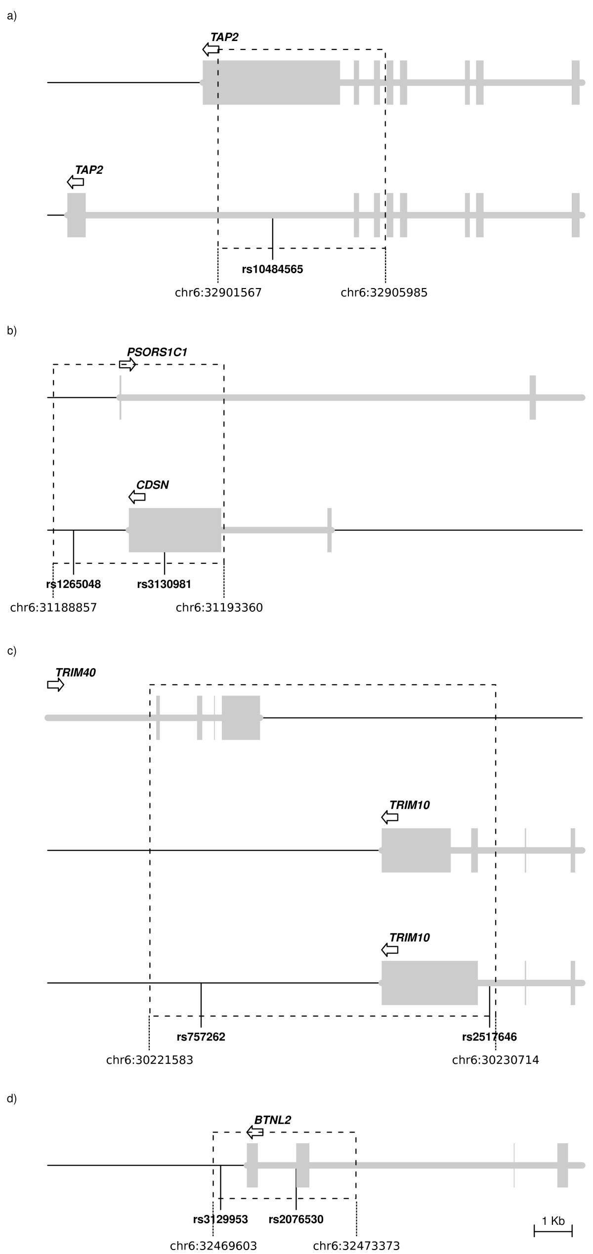 https://static-content.springer.com/image/art%3A10.1186%2F1471-2148-11-171/MediaObjects/12862_2011_1776_Fig2_HTML.jpg