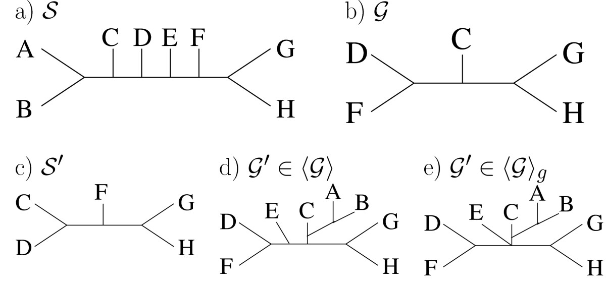 https://static-content.springer.com/image/art%3A10.1186%2F1471-2148-11-205/MediaObjects/12862_2010_Article_1843_Fig1_HTML.jpg