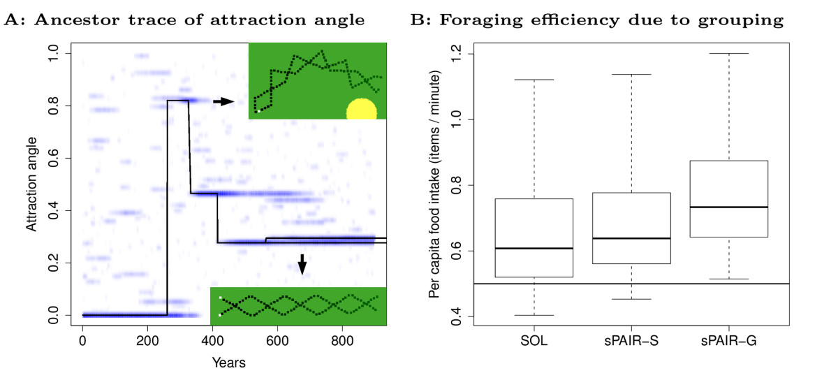 https://static-content.springer.com/image/art%3A10.1186%2F1471-2148-11-335/MediaObjects/12862_2011_Article_2001_Fig7_HTML.jpg