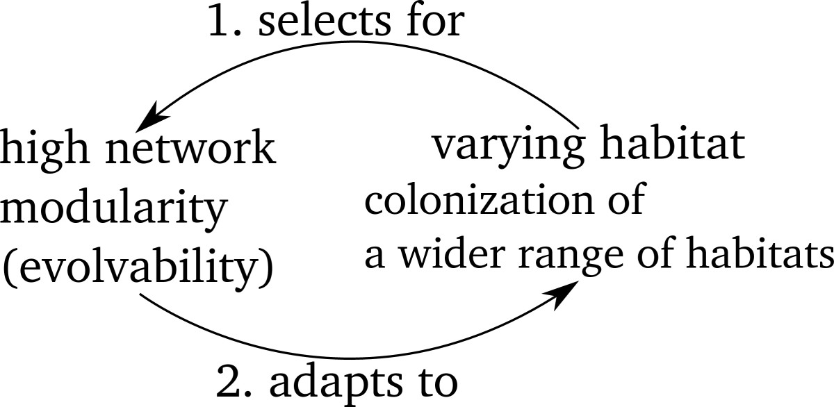 https://static-content.springer.com/image/art%3A10.1186%2F1471-2148-12-181/MediaObjects/12862_2012_Article_2173_Fig1_HTML.jpg