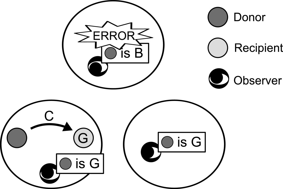 https://static-content.springer.com/image/art%3A10.1186%2F1471-2148-12-213/MediaObjects/12862_2012_Article_2172_Fig1_HTML.jpg