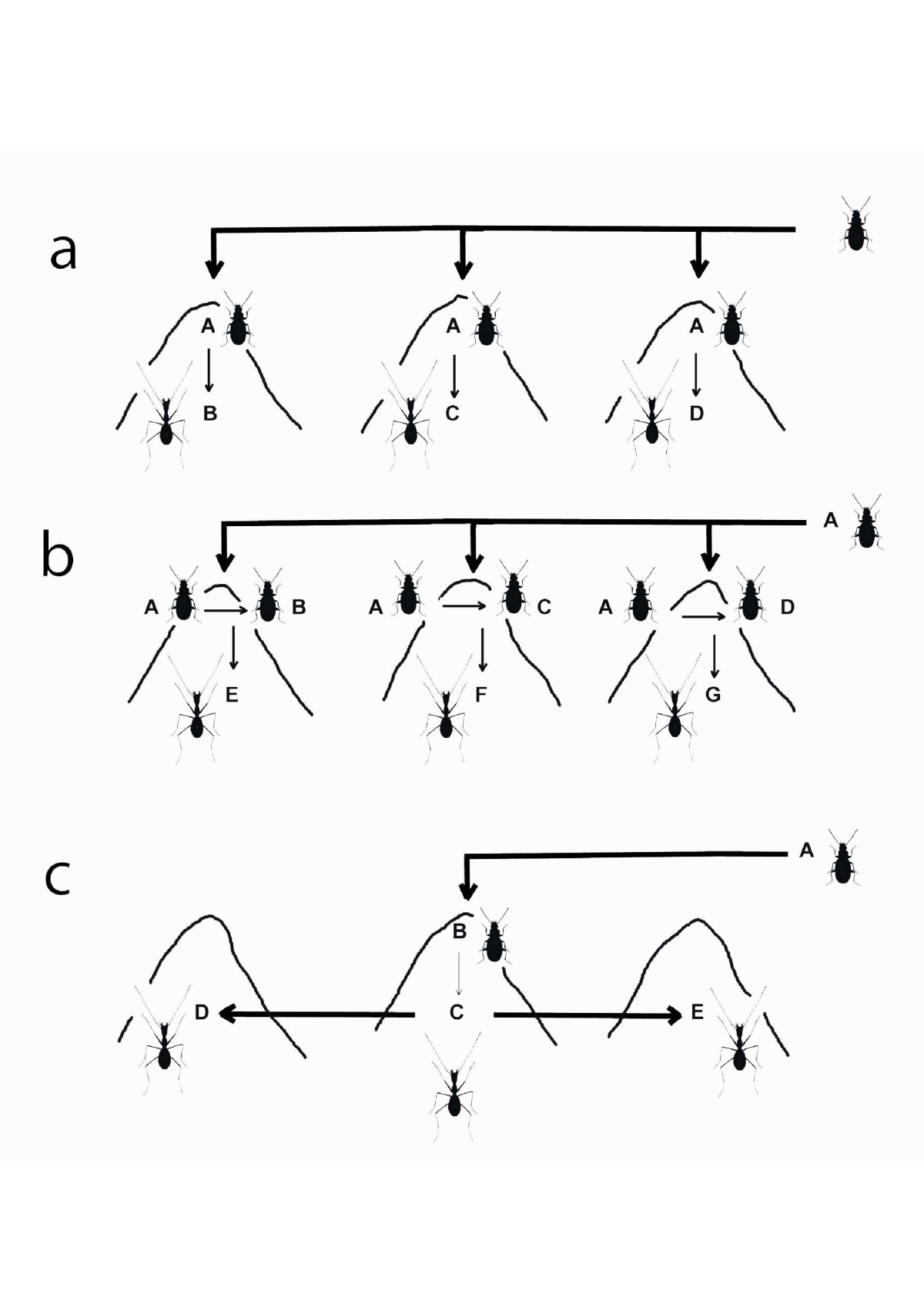 https://static-content.springer.com/image/art%3A10.1186%2F1471-2148-13-248/MediaObjects/12862_2013_Article_2765_Fig6_HTML.jpg
