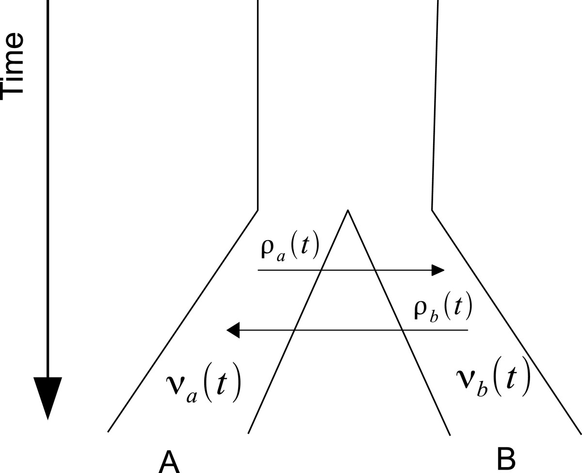 https://static-content.springer.com/image/art%3A10.1186%2F1471-2148-13-44/MediaObjects/12862_2012_Article_2324_Fig2_HTML.jpg