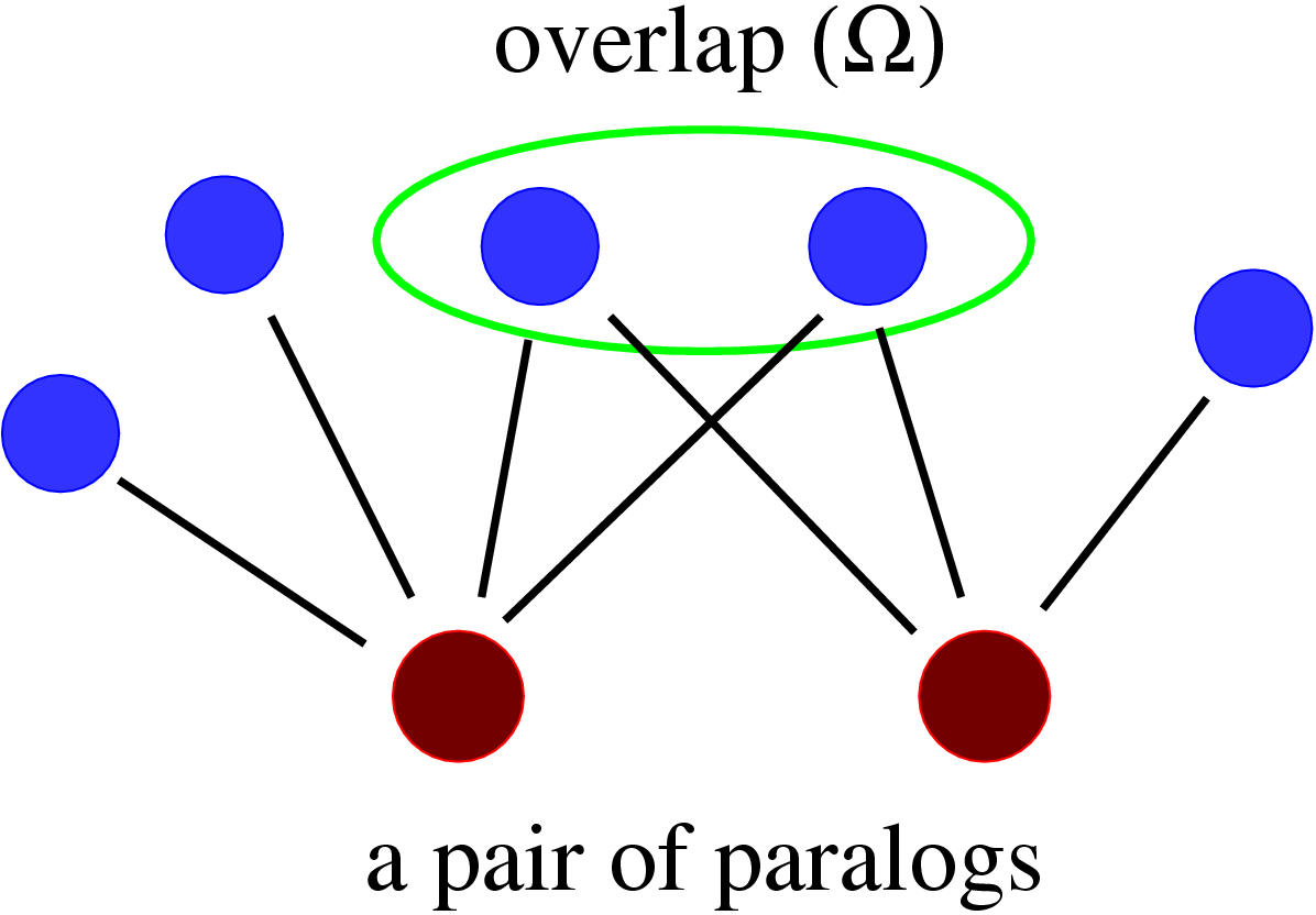 https://static-content.springer.com/image/art%3A10.1186%2F1471-2148-4-9/MediaObjects/12862_2003_Article_69_Fig1_HTML.jpg