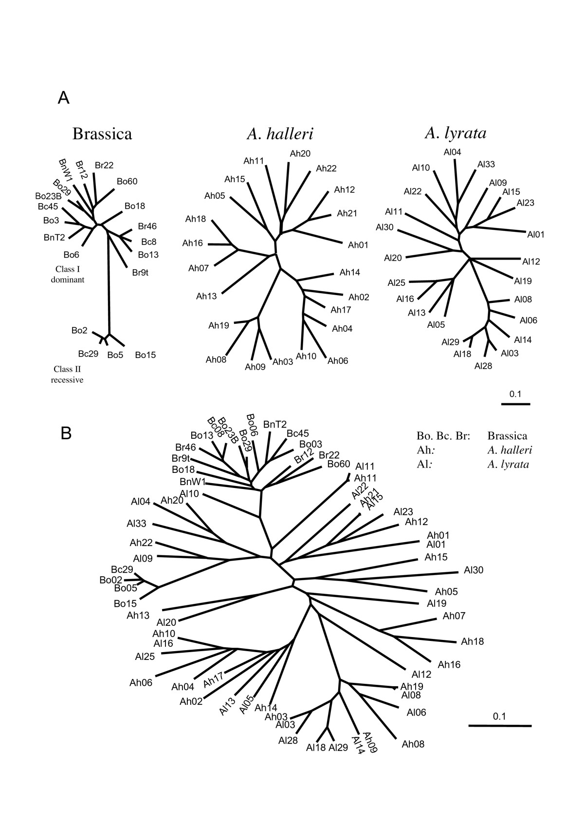 https://static-content.springer.com/image/art%3A10.1186%2F1471-2148-7-132/MediaObjects/12862_2006_Article_426_Fig1_HTML.jpg