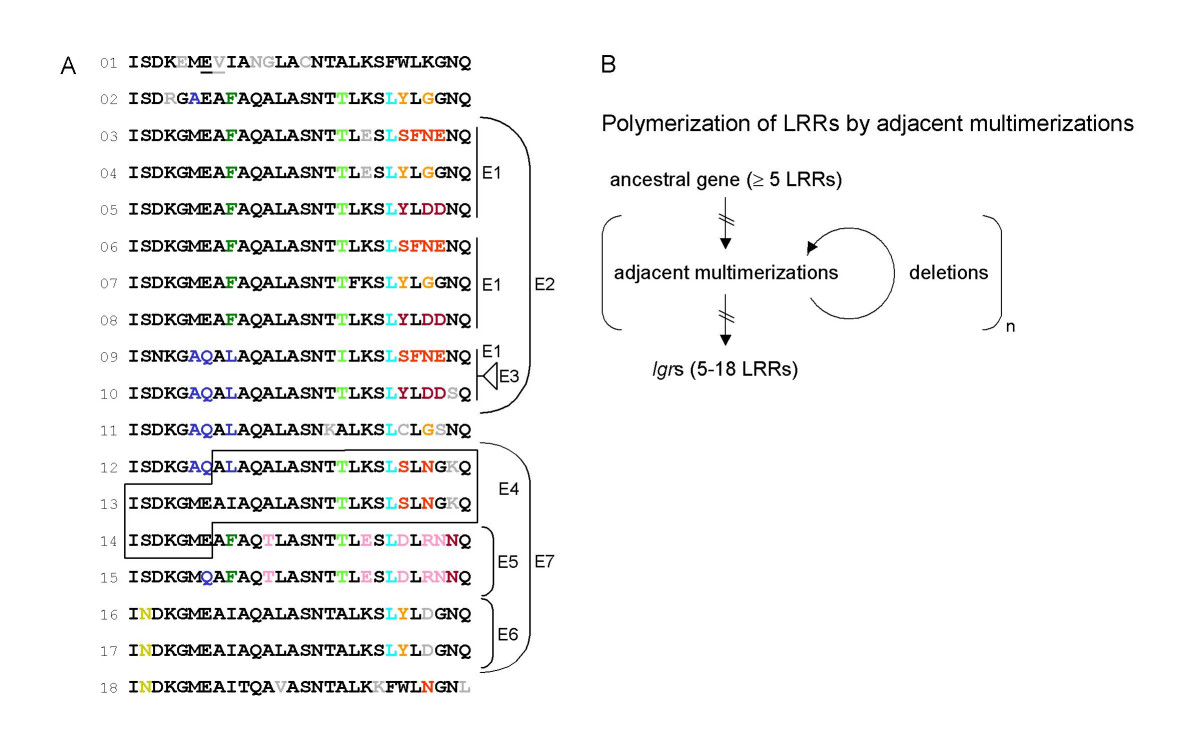 https://static-content.springer.com/image/art%3A10.1186%2F1471-2148-7-231/MediaObjects/12862_2007_Article_522_Fig7_HTML.jpg