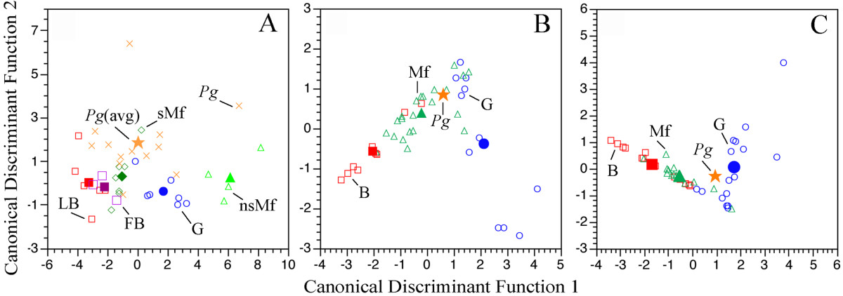 https://static-content.springer.com/image/art%3A10.1186%2F1471-2148-8-13/MediaObjects/12862_2007_Article_582_Fig4_HTML.jpg