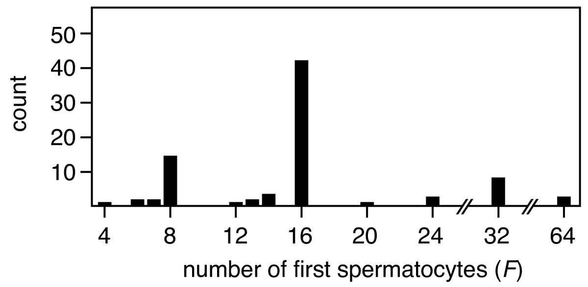 https://static-content.springer.com/image/art%3A10.1186%2F1471-2148-8-143/MediaObjects/12862_2007_Article_712_Fig3_HTML.jpg