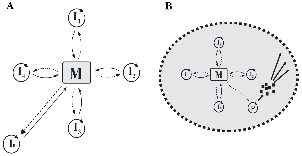 https://static-content.springer.com/image/art%3A10.1186%2F1471-2148-8-267/MediaObjects/12862_2008_Article_836_Fig7_HTML.jpg