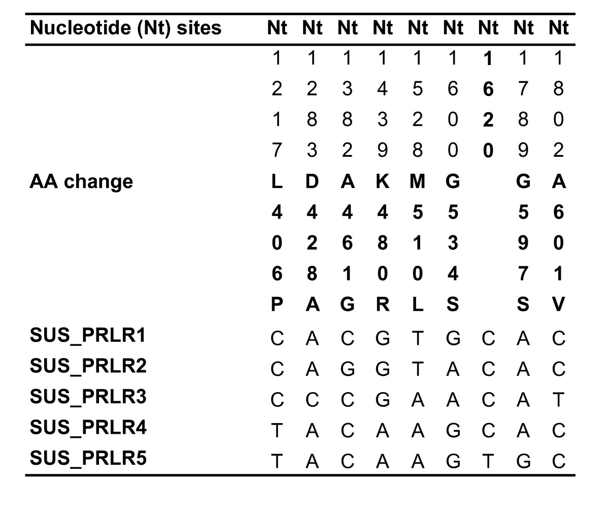 https://static-content.springer.com/image/art%3A10.1186%2F1471-2148-9-172/MediaObjects/12862_2009_Article_1086_Fig3_HTML.jpg