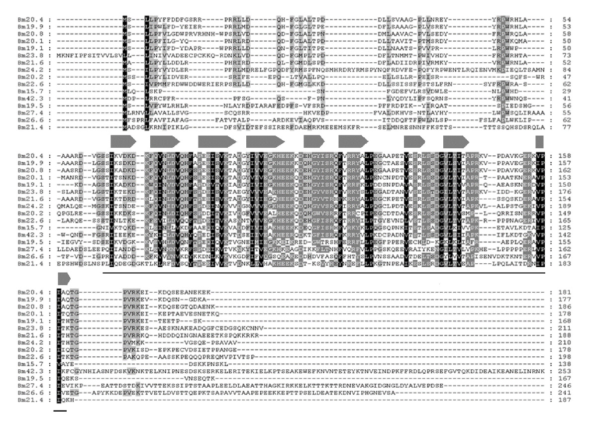 https://static-content.springer.com/image/art%3A10.1186%2F1471-2148-9-215/MediaObjects/12862_2009_Article_1129_Fig1_HTML.jpg