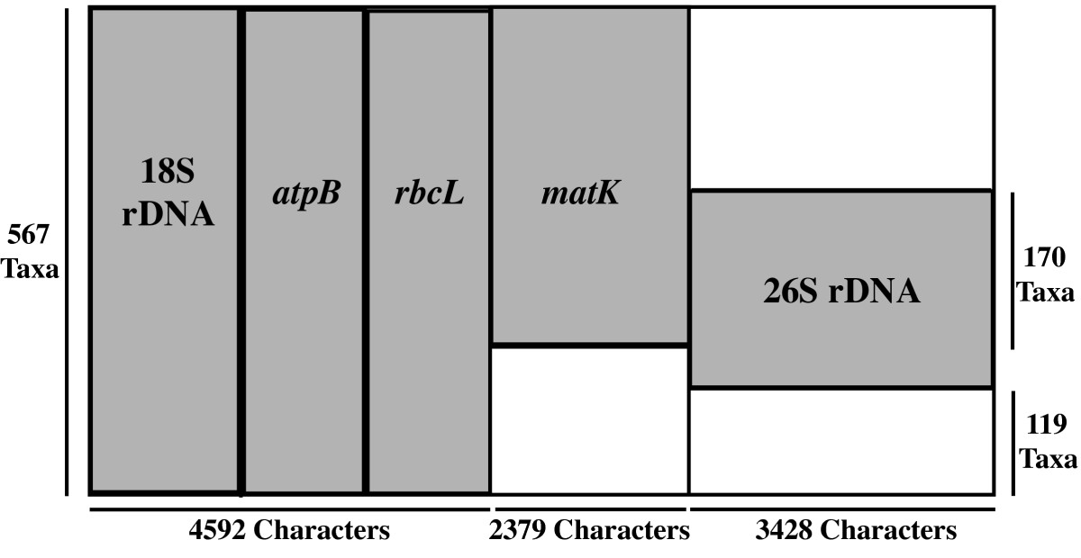 https://static-content.springer.com/image/art%3A10.1186%2F1471-2148-9-61/MediaObjects/12862_2008_Article_975_Fig1_HTML.jpg
