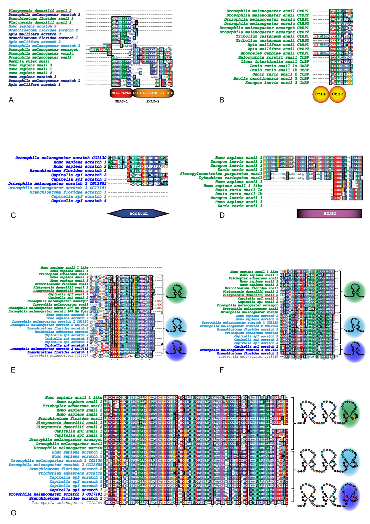 https://static-content.springer.com/image/art%3A10.1186%2F1471-2148-9-94/MediaObjects/12862_2008_Article_1008_Fig3_HTML.jpg