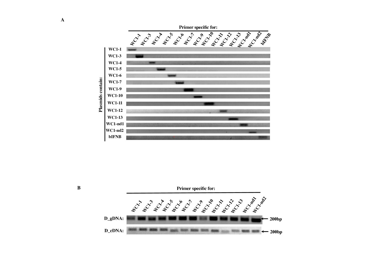 https://static-content.springer.com/image/art%3A10.1186%2F1471-2156-13-86/MediaObjects/12863_2011_Article_1048_Fig3_HTML.jpg