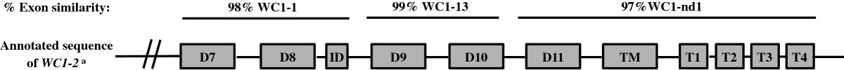 https://static-content.springer.com/image/art%3A10.1186%2F1471-2156-13-86/MediaObjects/12863_2011_Article_1048_Fig7_HTML.jpg