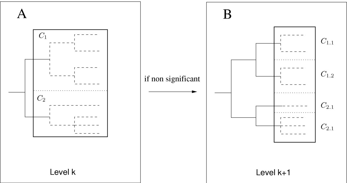 https://static-content.springer.com/image/art%3A10.1186%2F1471-2156-6-24/MediaObjects/12863_2005_Article_230_Fig3_HTML.jpg