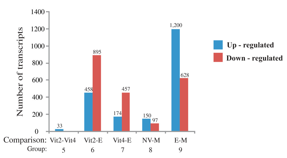 https://static-content.springer.com/image/art%3A10.1186%2F1471-2164-10-141/MediaObjects/12864_2008_Article_2025_Fig7_HTML.jpg