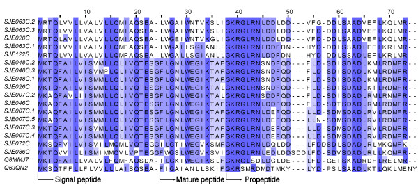 https://static-content.springer.com/image/art%3A10.1186%2F1471-2164-10-290/MediaObjects/12864_2009_Article_2174_Fig5_HTML.jpg
