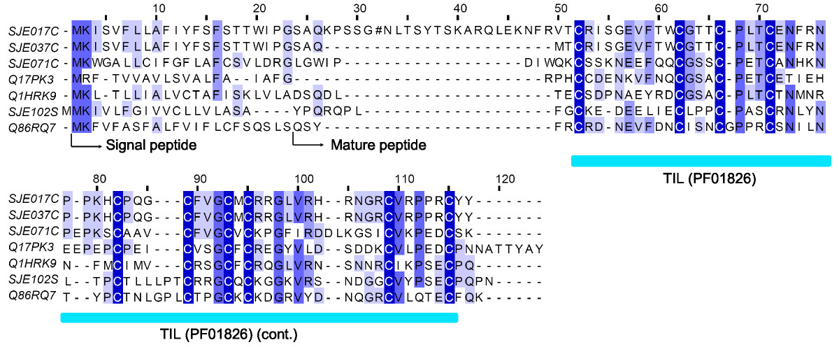 https://static-content.springer.com/image/art%3A10.1186%2F1471-2164-10-290/MediaObjects/12864_2009_Article_2174_Fig6_HTML.jpg