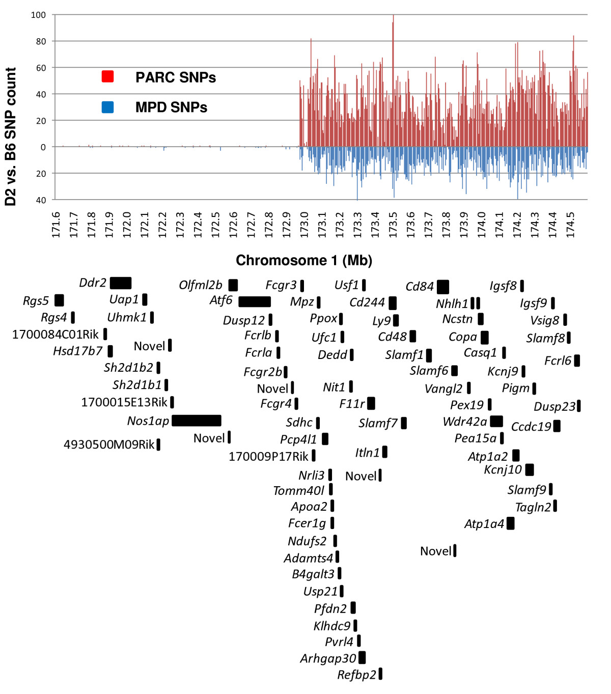 https://static-content.springer.com/image/art%3A10.1186%2F1471-2164-10-379/MediaObjects/12864_2009_Article_2263_Fig4_HTML.jpg